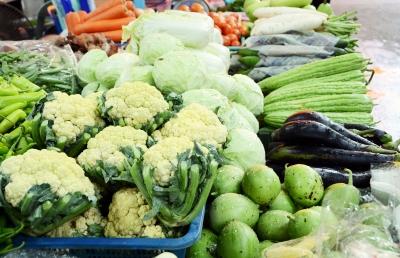 Board members of Food Industry Precinct announced