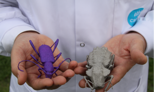 Up close and personal with the CSIRO printed titanium bugs. Image courtesy of CSIRO media release