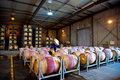 Winemakers ready to embrace innovativeness to fend off growing competition