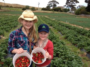 Kids with Australian Grown strawberries Image courtesy of Australian Made
