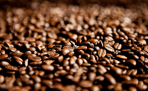 Alive and kicking: Australian coffee industry to boost production