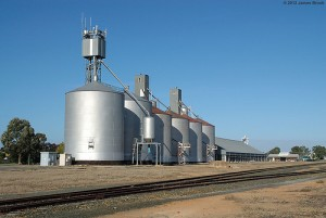 Graincorp silos at Deniliquin Image credit: flickr User: VRfan