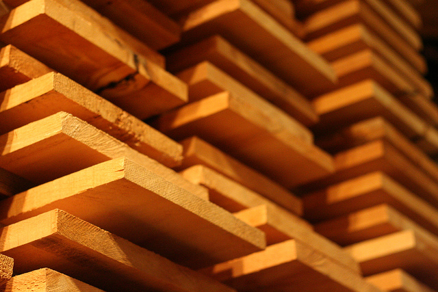 SA Government to provide a $10.46m grant to grow forest and wood industry