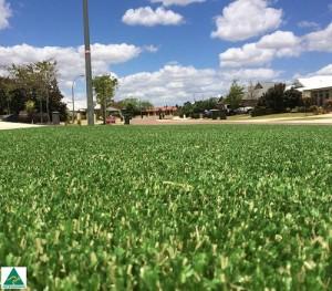Image credit: www.greenplanetgrassperth.com.au