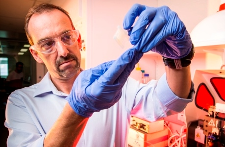 Professor Marc in het Panhuis  Image credit: www.electromaterials.edu.au