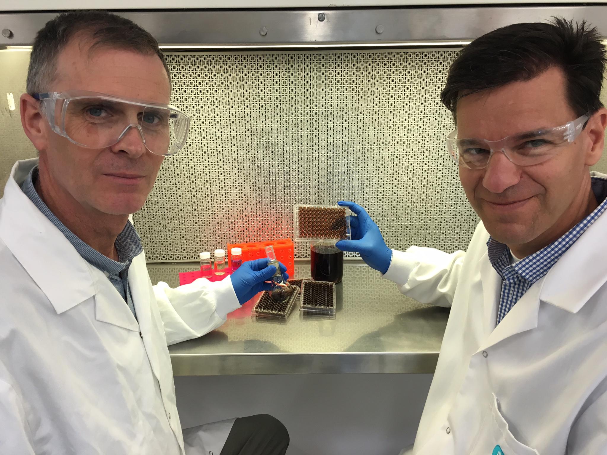 CSIRO turns to primordial goo to improve medical implants